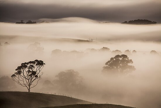 Misty Myalla Morning by Paul Campbell  Photography