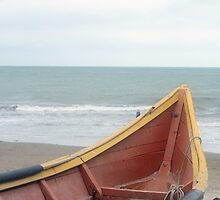 Brown and Yellow Fishing Boat on the Beach by rhamm