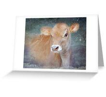 Little Jersey Calf Greeting Card