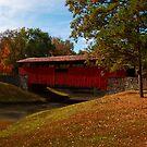 Arkansas Covered Bridge - Burns Park by Lisa G. Putman