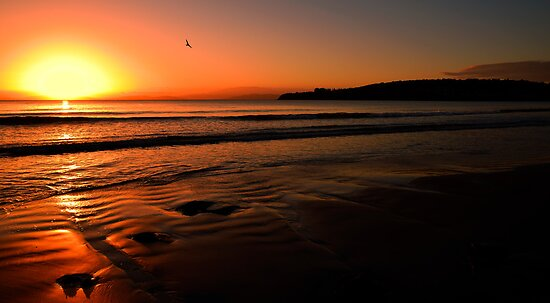 Sun set primrose sands beach  by Robert-Todd