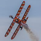 Wing Walker by Trevor Middleton