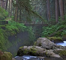 Olympic National Park, Washington State by therealss471