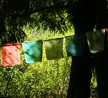 Tibetan Prayer Flags by kchase