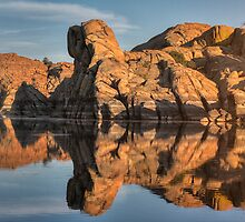Granite Rorschach by Bob Larson
