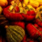 Gourds Of St. Jacobs by sundawg7