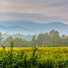 Cades Cove (HDR) by photodug
