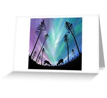 Deer grazing over Northern Lights Greeting Card