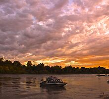 Evening on the River by Barbara  Brown