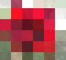 Red Rose Edges Abstract Rectangles 3 by Christopher Johnson
