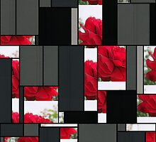 Red Rose Edges Art Rectangles 7 by Christopher Johnson