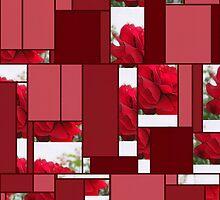 Red Rose Edges Art Rectangles 8 by Christopher Johnson
