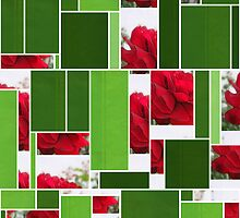 Red Rose Edges Art Rectangles 12 by Christopher Johnson