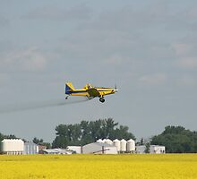 Sprayer Plane Over Canola by rhamm