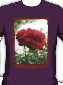 Red Rose with Light 1 Blank P5F0 T-Shirt