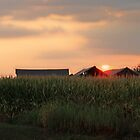 Wisconsin Sunset by VJSheldon