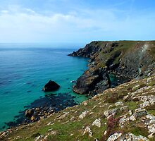 Lizard Coast, Cornwall by Ludwig Wagner
