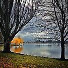 Lake Wendouree Winter Colour by Craig Mitchell