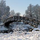 Bridge Snow Scene by Trevsnature