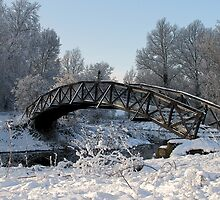Bridge Snow Scene by Trevsnature