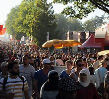 Fair Crowds by Tracy Friesen