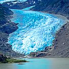 Foot of Bear Glacier by Yukondick