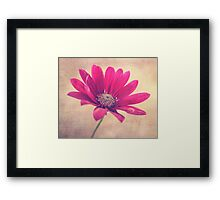 Lift Your Head And Shine Framed Print