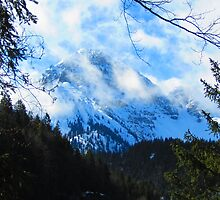 Austerities of Austrian Alps by Mary-Elizabeth Kadlub