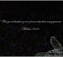 Photography/Digital Art - Bird With Bible Quote - Color by Rebecca Grant