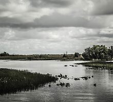 "Everglades ""Two"" by NathanGordon"