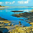 Moonee Beach Estuary by Penny Smith