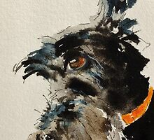 Scottish Terrier by archyscottie