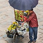 Fruit Seller  by Alan Robert Cooke