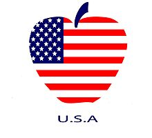 American flag as a symbol of the apple by artMoni