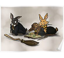 Hare-y Potter Poster