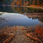 Stairs to Fall by Delfino