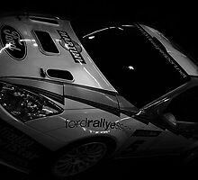 Rally Car by liberthine01