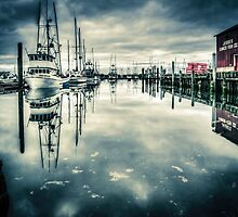 Any Port in a Storm by Steve Walser