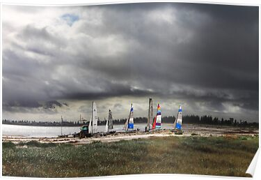 Sails at Largs Bay  by pearloil