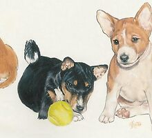 Basenji Puppies by BarbBarcikKeith