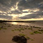 Colwell Bay by Andrew Jeffries