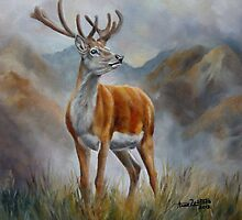 Prince Of The Glen (red stag) by Anne Zoutsos