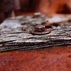 Rust Life by Blacktooth
