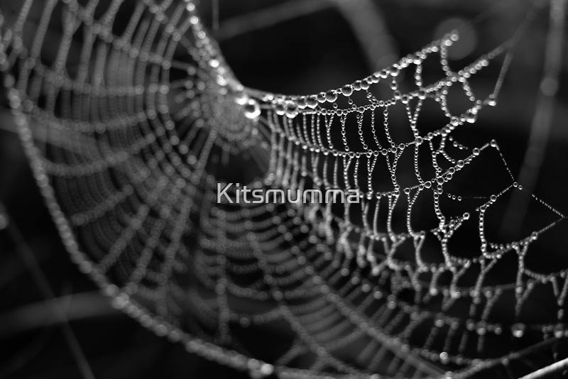 Fragile Beauty by Kitsmumma