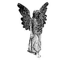 Graveyard Weeping Angel. Creepy Halloween Digital Engraving Image Photographic Print