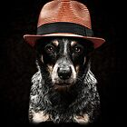 Sheila: Cattle Dog Detective by Bobby Acree
