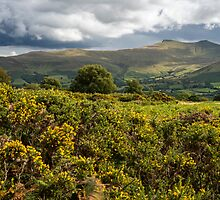 Pen y Fan from Mynydd Illtud Common Brecon Beacons by Nick Jenkins