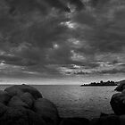 Black and White Weather by Alessandra Antonini
