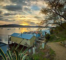 Cornelian Bay Boat Sheds at Sunrise by Chris Cobern