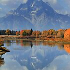 Mt. Moran by Ann  Van Breemen